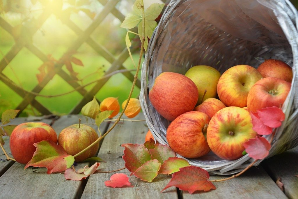 Great Deck Decor Ideas for Fall